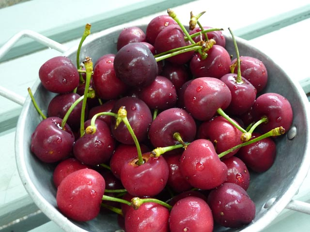 Bowls of washed red cherries