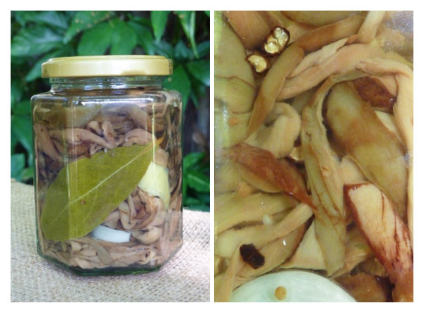 jar of sliced and pickled eggplant