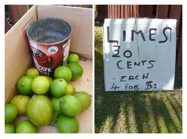 Lime Pair