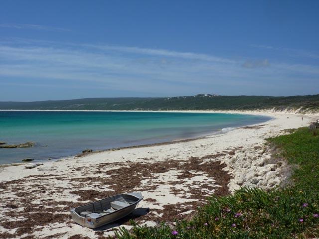 WA Cape Naturalise