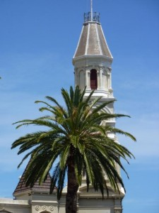 Historic Town Hall building with palm tree in front - Fremantle, Wa