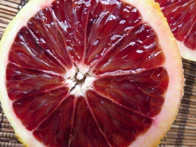 Blood Orange Marmalade From Darkest Peru - Tiffin - bite