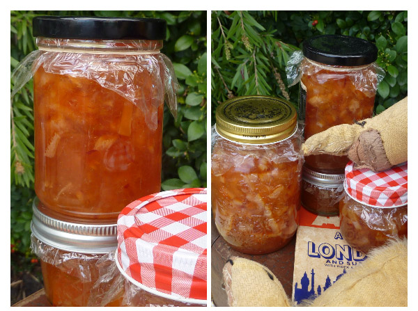 Marmalade pair vertical