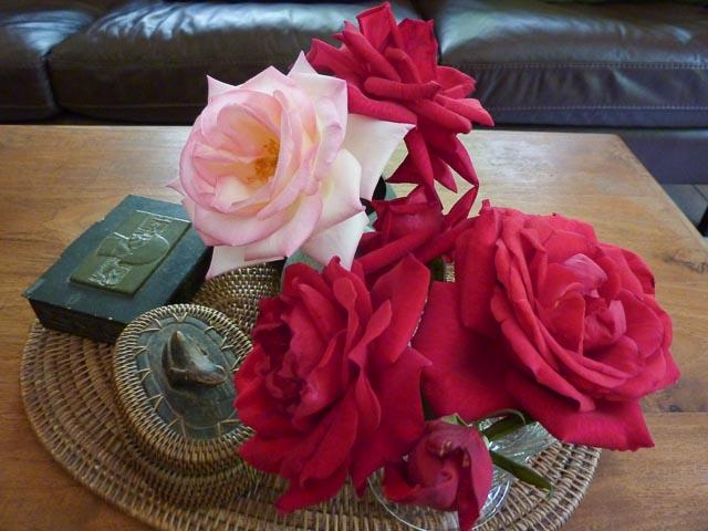 IMK Roses 2