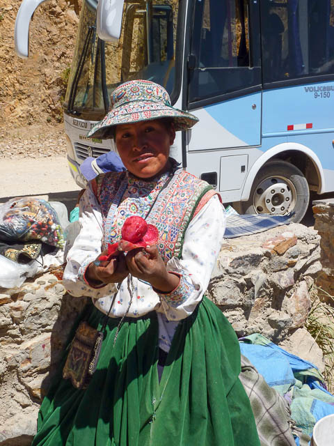 Woman in traditional full skirt and ornately embroidered vest & hat. Selling prickly pear fruit - Colca Canyon, Peru