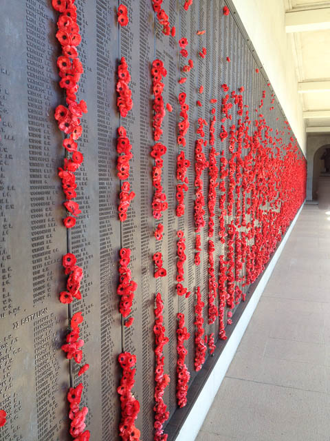 Poppies at the Australian War Memorial, Canberra