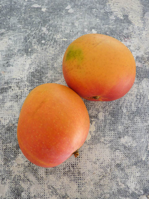 Two plump R2E2 mangoes with a red blush