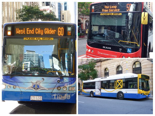 Images of Brisbane buses including the City Glider, City Loop and a general bus
