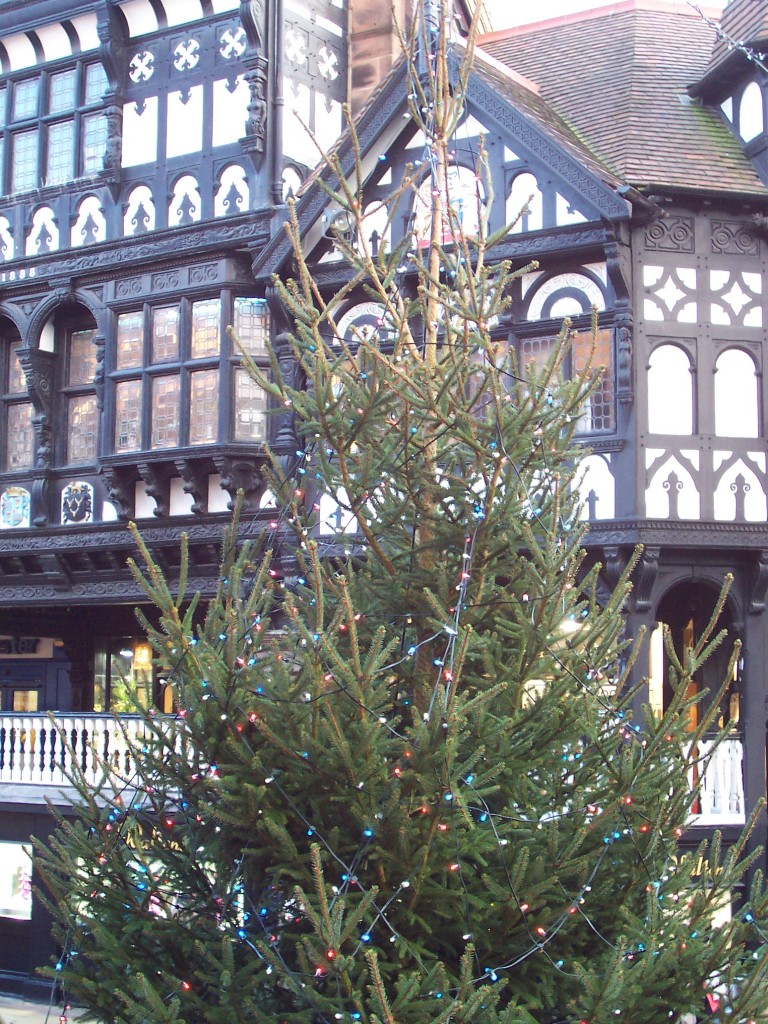 Christmas Tree & half timbered building in Chester, UK