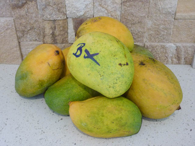 A pile of mangoes from western Queensland including one marked with 'Bx' meaning 'Bowen cross'.