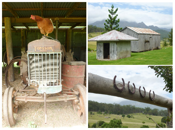 Pastoral scenes from Lillydale Farmstay on the Scnic Rim including a chicken sitting on an old tractor, horseshoes and old wooden out buildings.