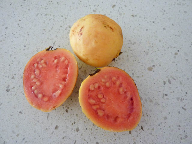 Two yellow skinned guavas - one cut in half to reveal pink interior