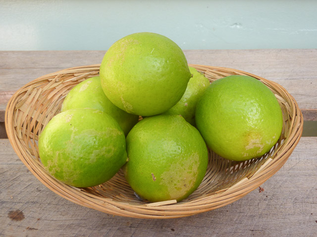 A pile of limes from Wide Bay-Burnett