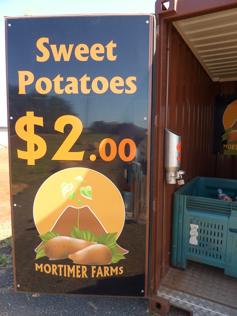 large roadside stall sign selling sweet potatoes in wide bay burnett