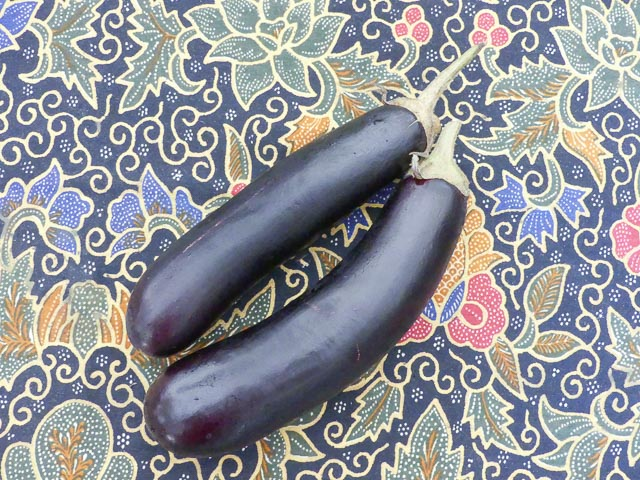 two eggplants sit on a table
