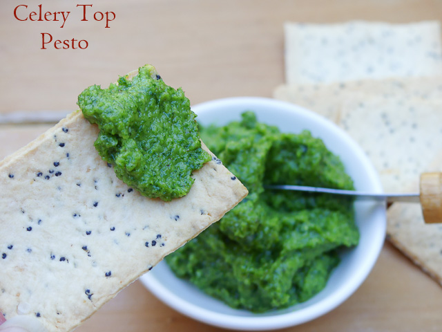 cracker spread with celery top pesto