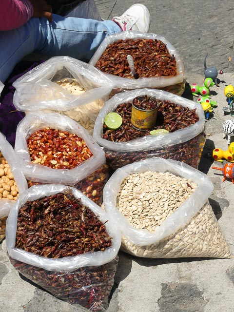 closeup of items being sold by a street food seller in cholula, mexico