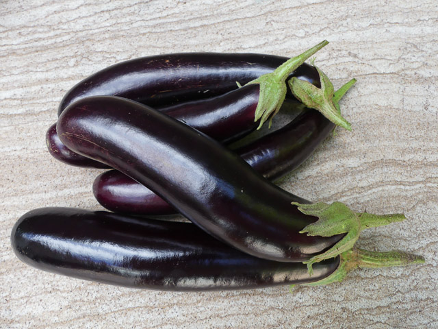 group of slim eggplants piled together on sandstone