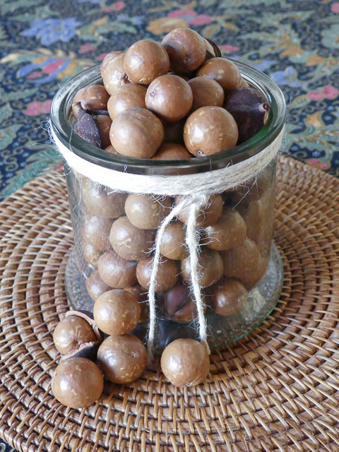 large glass jar filled with unshelled macadamia nuts